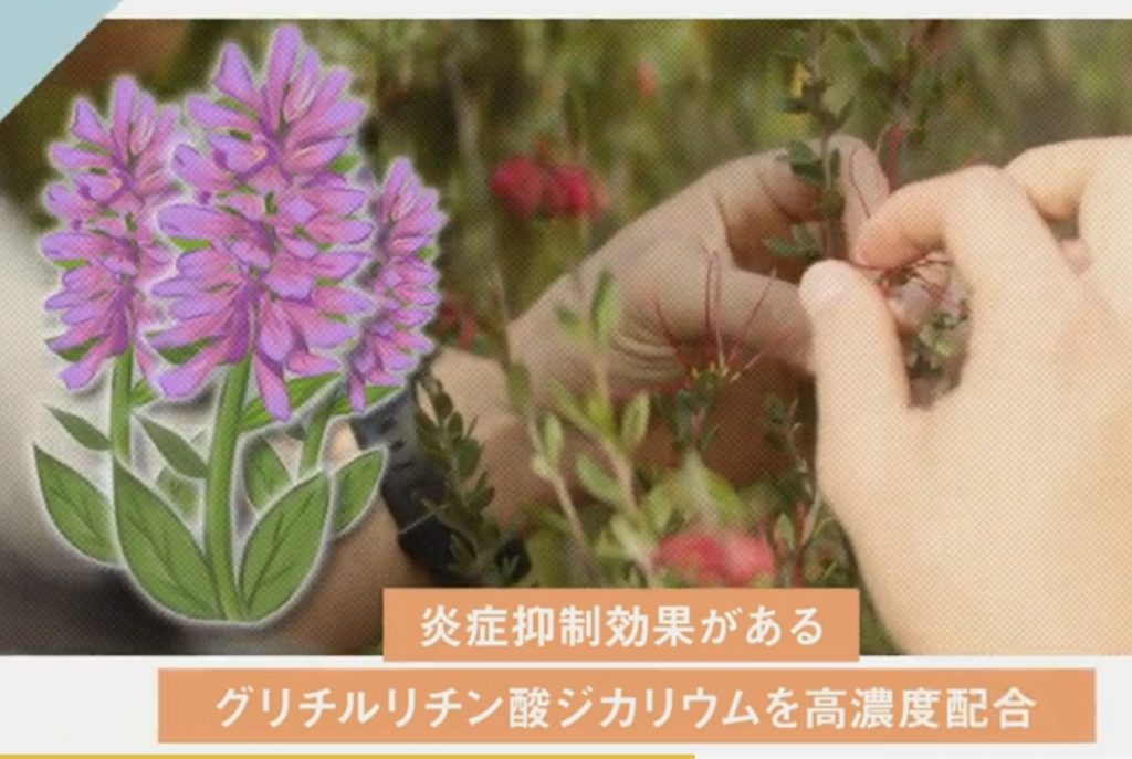 スクリーノ効果① 炎症抑制