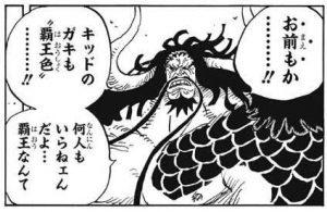 カイドウ 覇王色の覇気